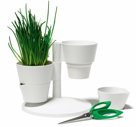 herb_stand_2