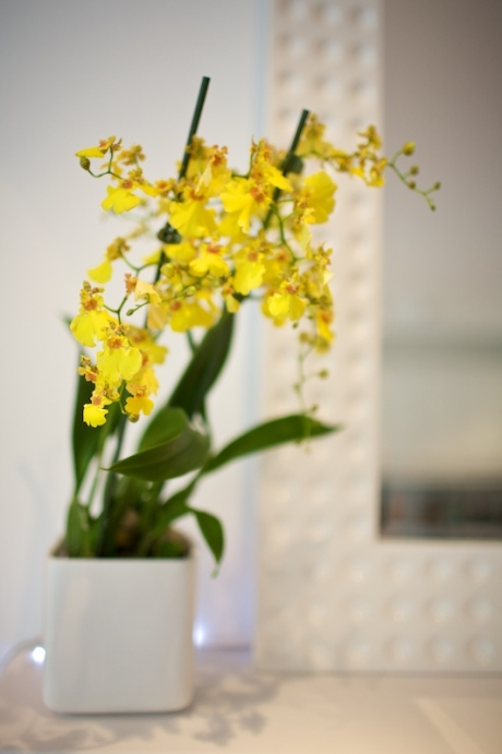 Yellow orchids are in keeping with the vibrant citrus colour scheme.
