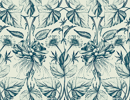 Emma Shipley's Botanic wallpaper design